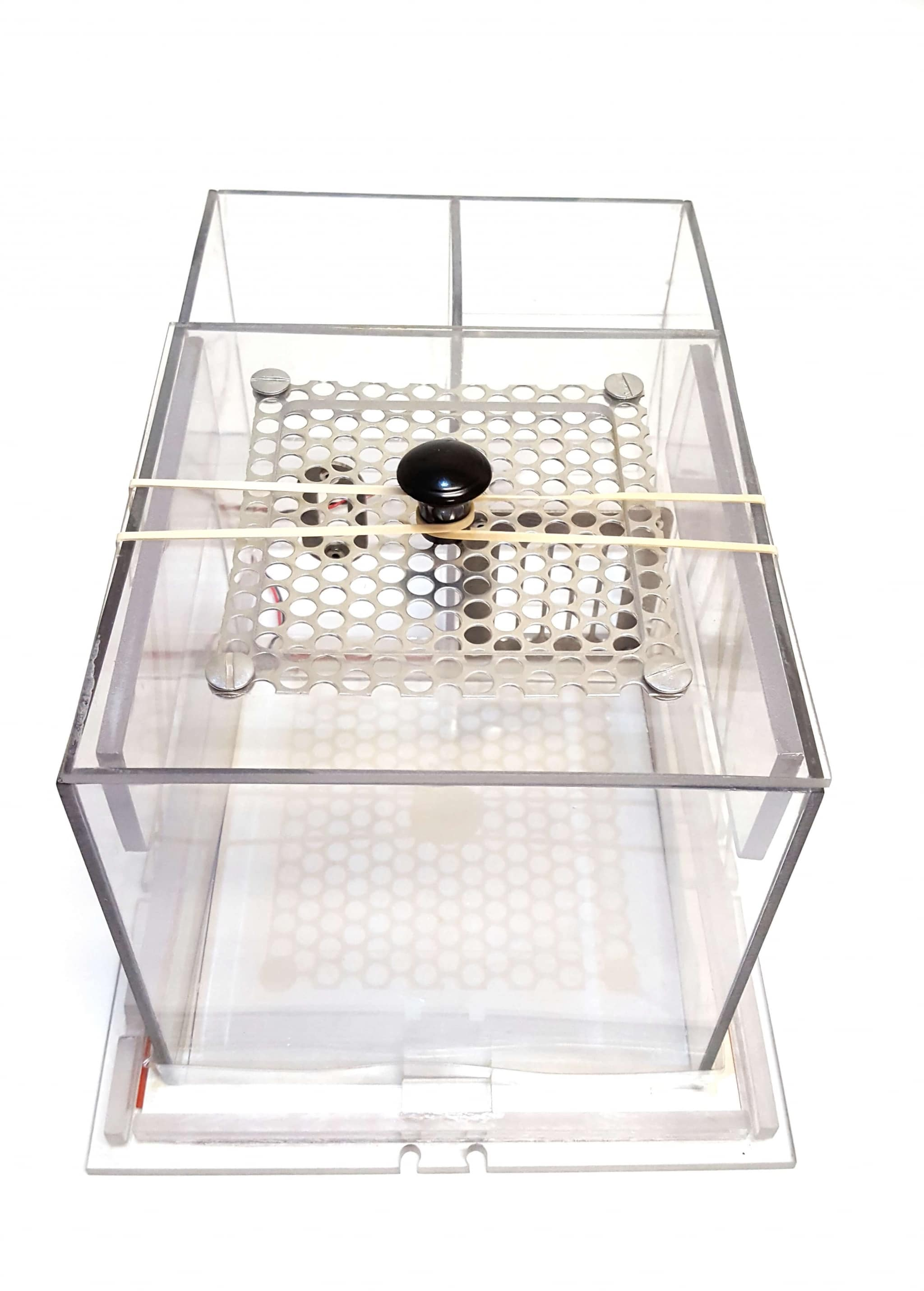 Custom Mouse Cage Single Signal Solutions
